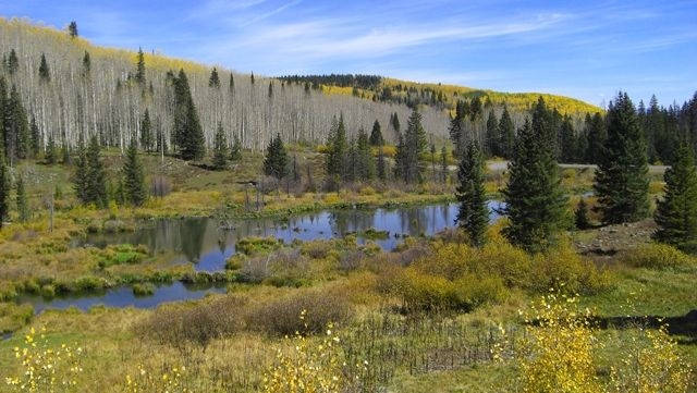 grand-mesa-scenic-byway-
