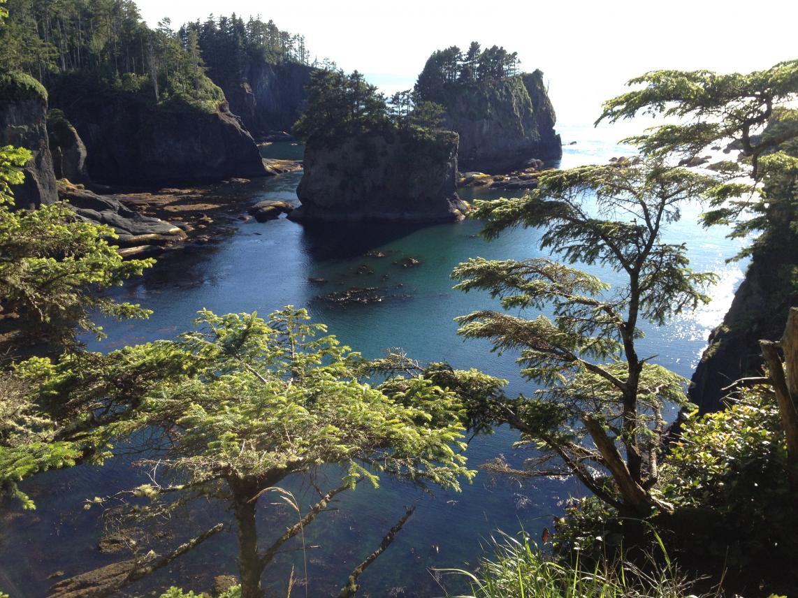olympic-peninsula- Route Photo